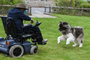 10 Best Electric Wheelchairs in 2021
